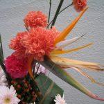 生花 フラワーディスプレイ